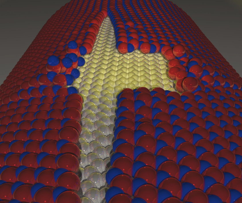 Dynamical aspects of the unzipping of multiwalled boron nitride nanotubes