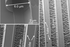 """""""Rolled-up tubes and cantilevers by releasing SrRuO3-Pr0.7Ca0.3MnO3 nanomembranes."""" Nanoscale Research Letters (Online), v. 6, p. 621, 2011."""