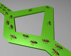 Designing conducting polymers using bioinspired ant algorithms