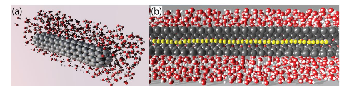 High Pressure Induced Binding Between Linear Carbon Chains and Nanotubes