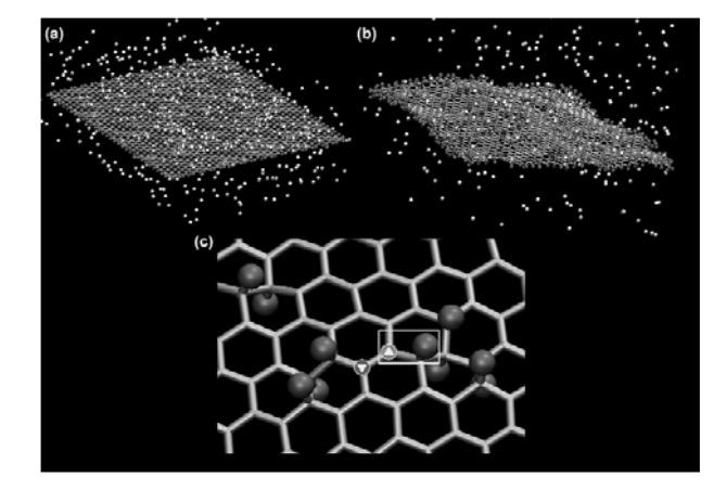 The Dynamics of Formation of Graphane-like Fluorinated Graphene Membranes (Fluorographene): A Reactive Molecular Dynamics Study