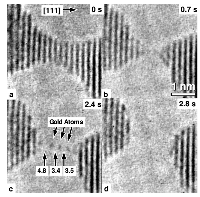 Origin of anomalously long interatomic distances in suspended gold chains