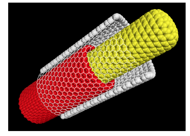 Chaotic signature in the motion of coupled carbon nanotube oscillators