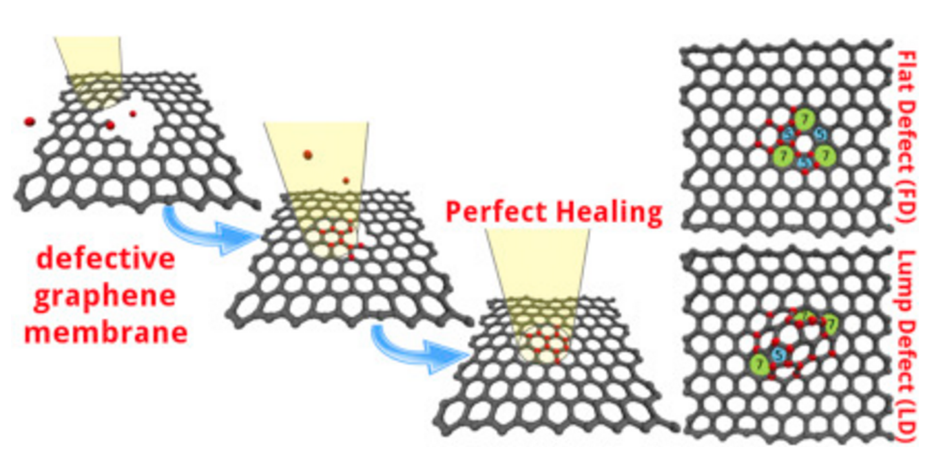 Graphene healing mechanisms: A theoretical investigation