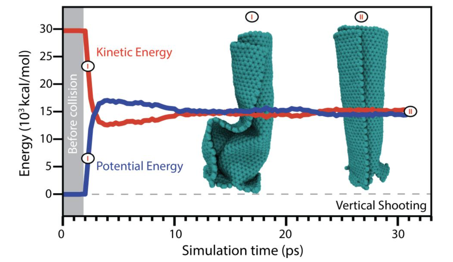 Carbon Nanoscrolls at High Impacts: A Molecular Dynamics Investigation