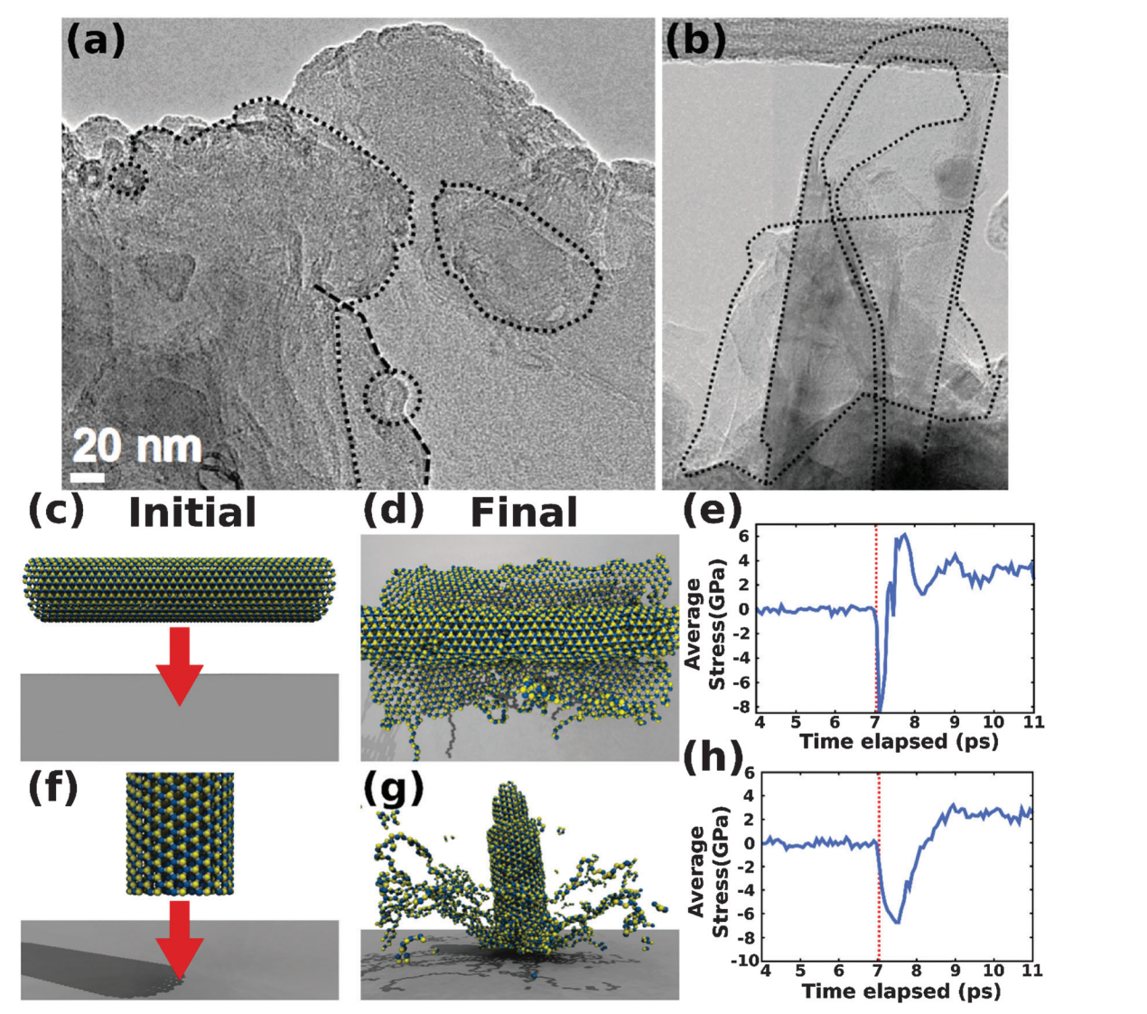 The structural and dynamical aspects of boron nitride nanotubes under high velocity impacts
