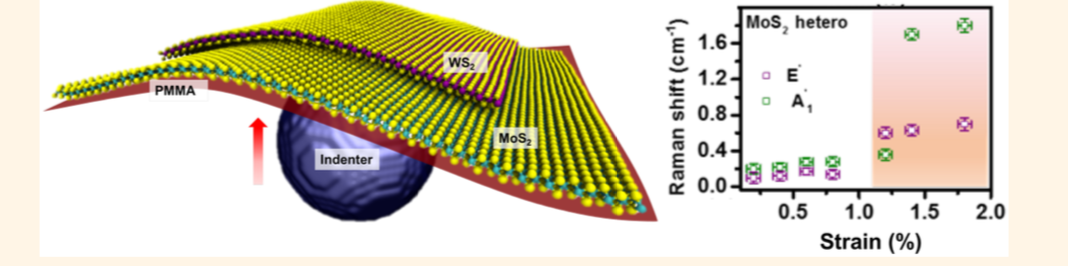 Deformation Mechanisms of Vertically Stacked WS2 /MoS2 Heterostructures: The Role of Interfaces