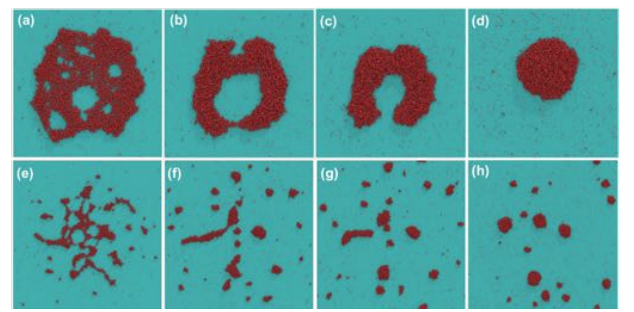 Structural Properties of Nanodroplets Impacting Graphene at High Velocities